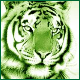 Tiger Reborn expose website..